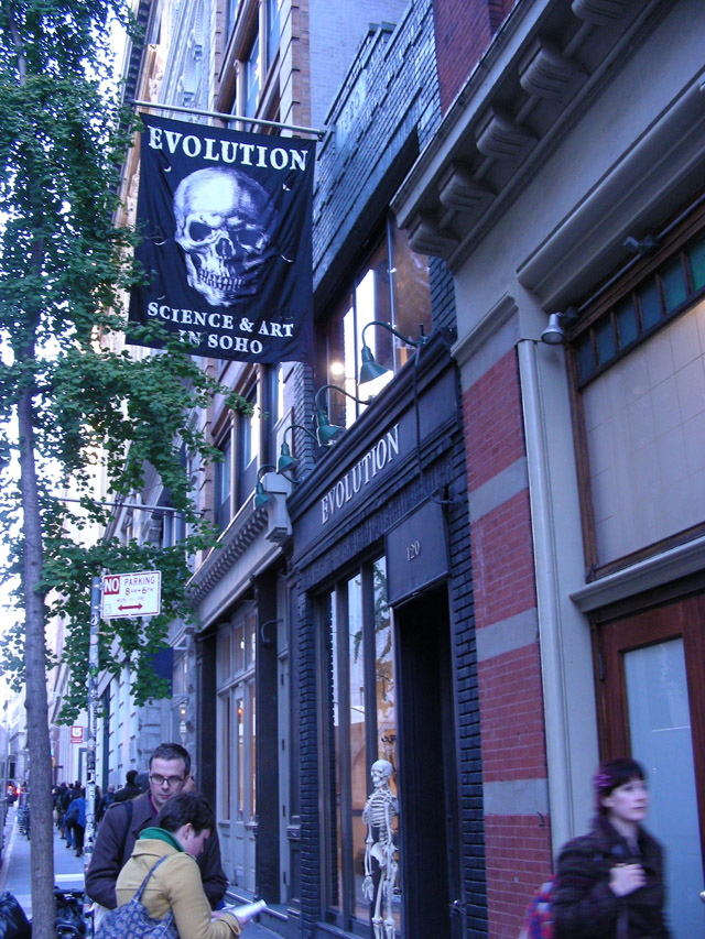 outside of building hangs a sign with skull on it, advertising The Evolution Store