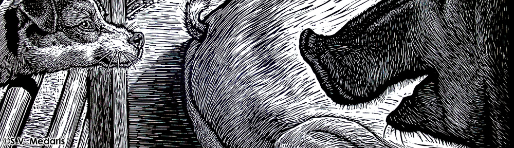 woodcut of terrier and hog facing off