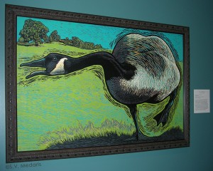 woodcut of canadian goose