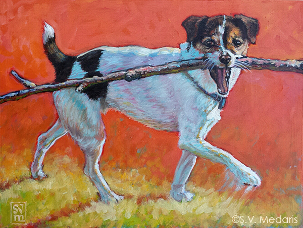 oil painting by S.V. Medaris of little white, black, brown terrier with very large stick in mouth