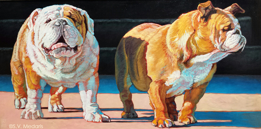 oil painting by S.V. Medaris of 2 side-lit bulldogs